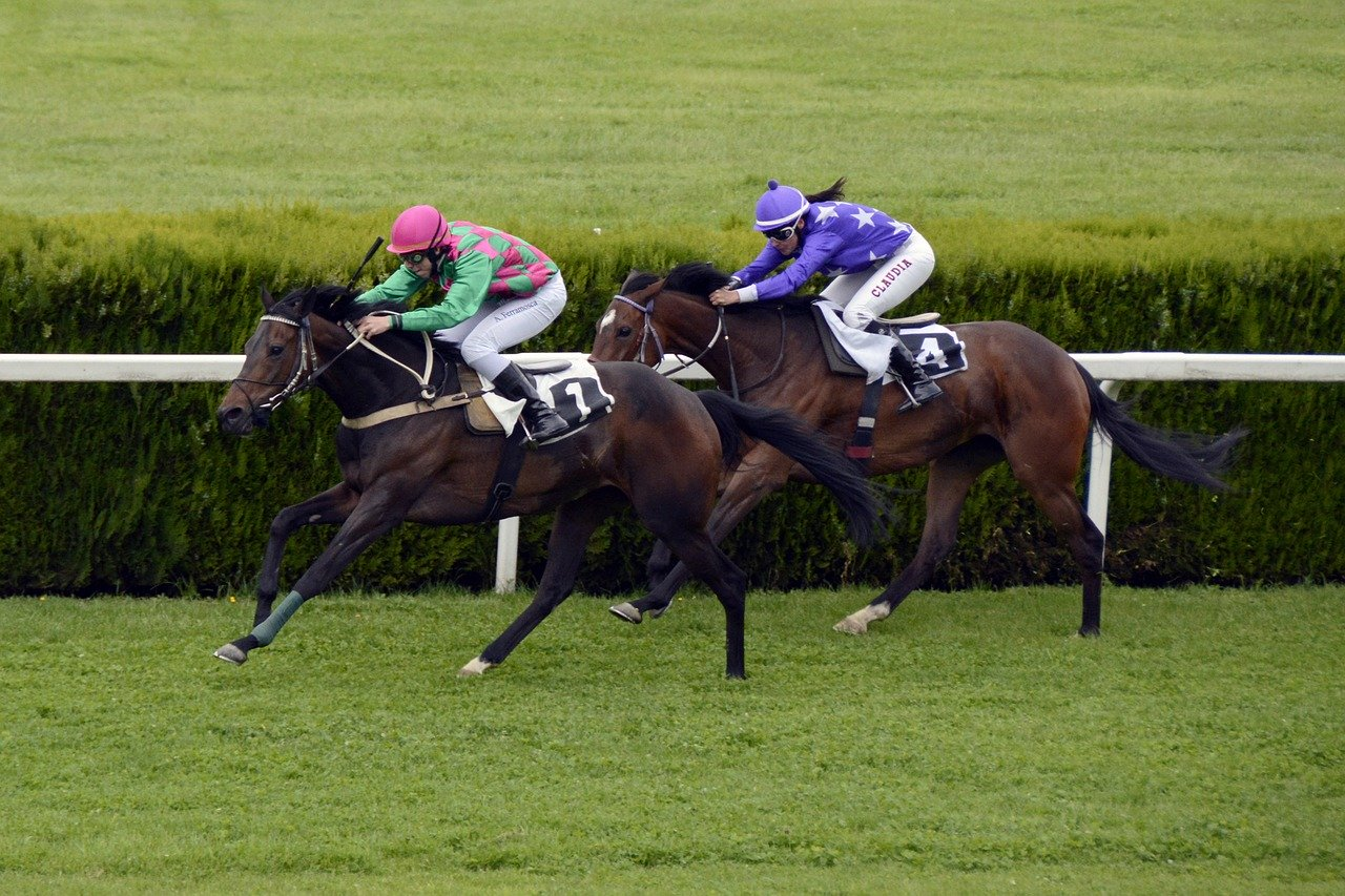California Horse Racing Online Horse Betting In California